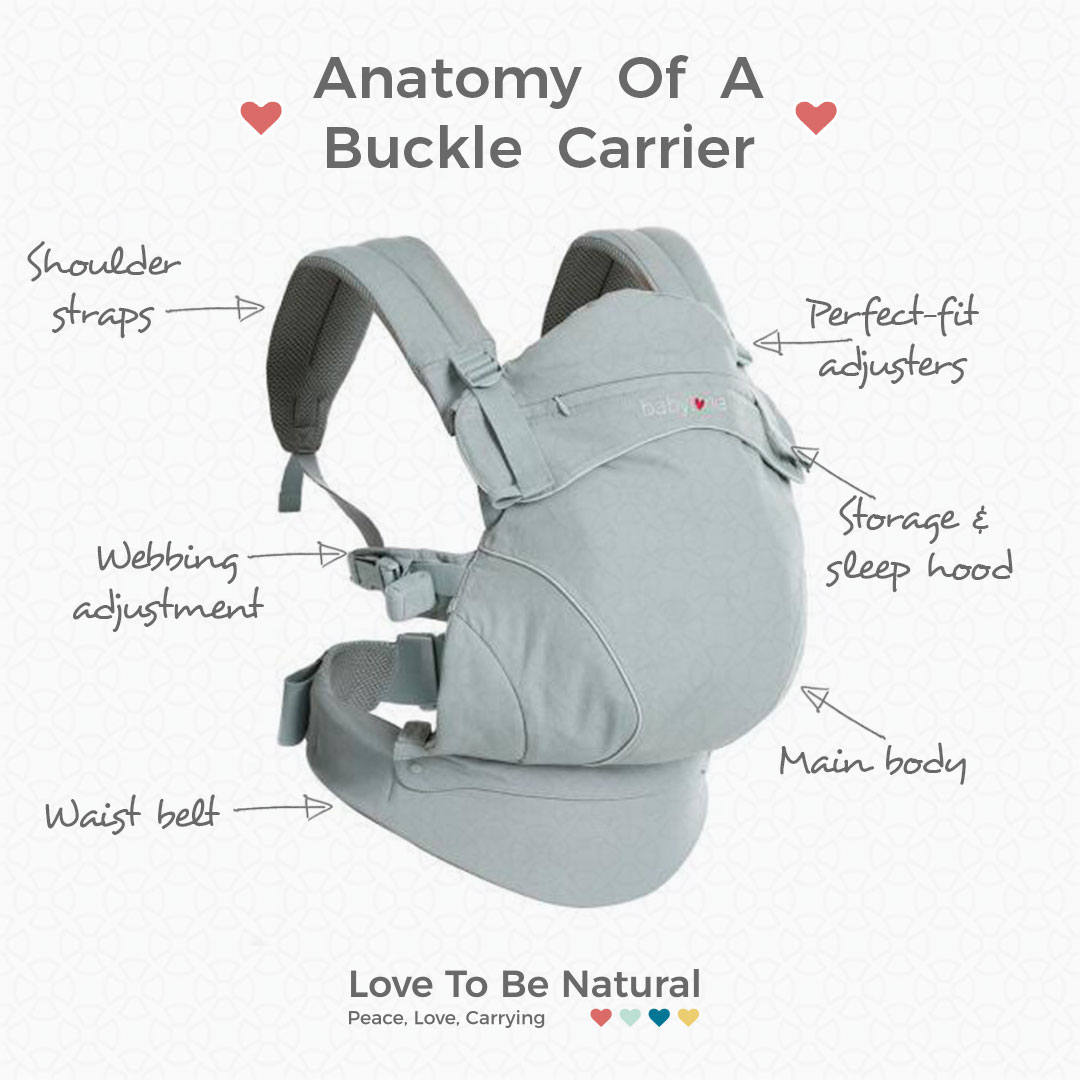 Anatomy of a buckler carrier